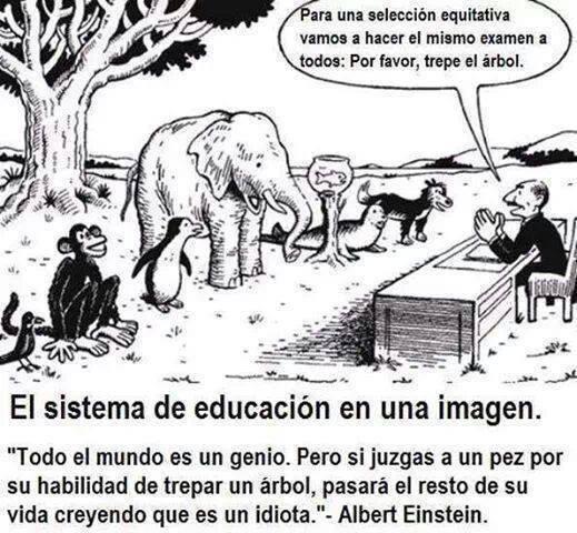educación capacidades