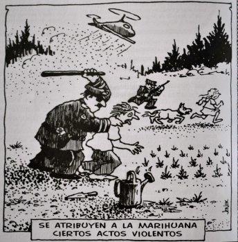 Marihuana actos violentos