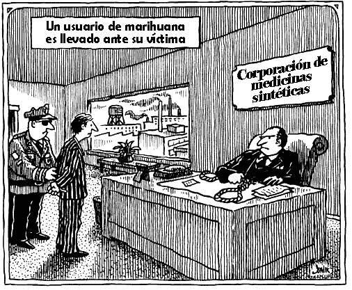 Uusuario marihuana víctima farmaceúticas